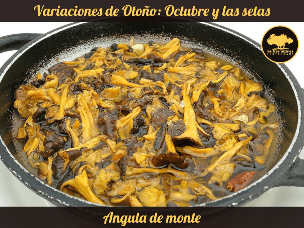 Restaurante braseria en La Roca Village - Les Tres Alzines - Cocina de temporada | Angula de monte